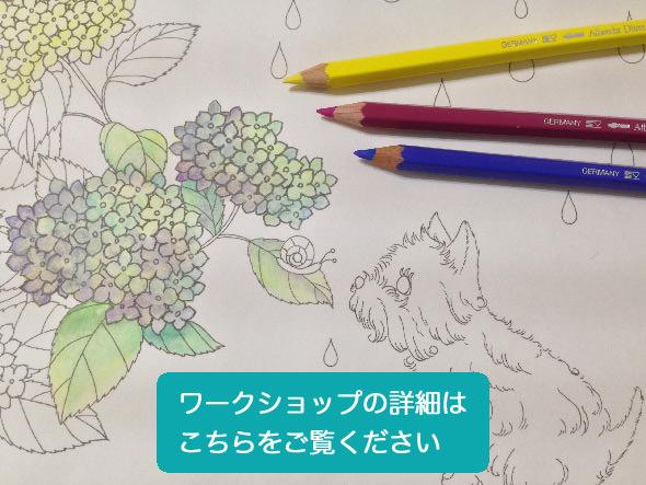 毎月第2土曜日 水彩色鉛筆講座開催!「絵が描けなくても大丈夫!水彩色鉛筆と大人の塗り絵でオリジナルタンブラー作り!」