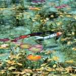 モネの池-min