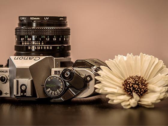 モノトーンカメラ